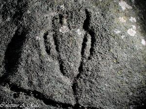 Pedra Ancha 1-7