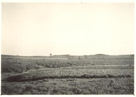 Monte Piquiño, 1951. Fondo fotográfico Ángel Núñez Sobrino, Arquivo Municipal de Teo. Ramón Sobrino Lorenzo- Ruza (1915-1959)